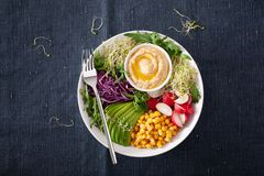 Vegan avocado sweet corn lunch bowl with hummus, red cabbage, radish and sprouts stock photography