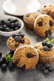 Vegan banana blueberry muffins Royalty Free Stock Images