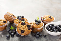Vegan banana blueberry muffins. Healthy vegan banana blueberry muffins with fresh berries stock image