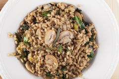 Vegan Barley Meal Royalty Free Stock Photography