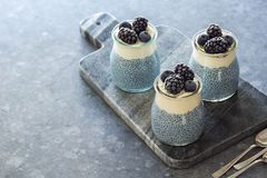 Vegan Blue Chia Pudding with Frozen Berries Royalty Free Stock Photography
