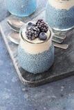 Vegan Blue Spirulina Chia Pudding with Frozen Berries royalty free stock photo