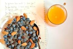 Vegan breakfast with berries and orange juice Royalty Free Stock Photo