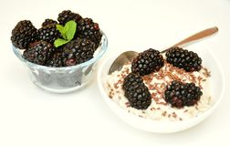 Vegan breakfast with oatmeal porridge and blackberry Royalty Free Stock Photography