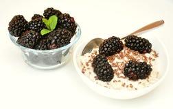 Vegan breakfast with oatmeal porridge and blackberry Royalty Free Stock Photography