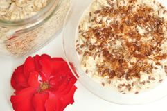 Vegan breakfast with oatmeal porridge and flax seeds Royalty Free Stock Photography