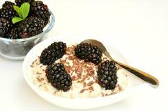 Vegan breakfast with oatmeal porridge and fresh fruit Stock Photo