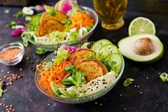 Vegan buddha bowl dinner food table. Healthy vegan lunch bowl. Fritter with lentils and radish, avocado, carrot salad. royalty free stock images