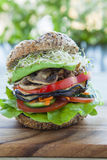 Vegan burger Royalty Free Stock Photo
