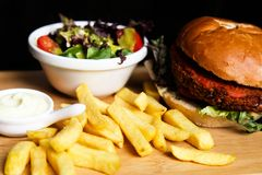 Vegan burger with salad, and french fries stock photography