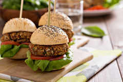 Vegan burgers with beans and vegetables Stock Images