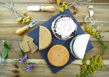 Vegan cheeses Stock Photography