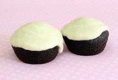 Vegan Chocolate Mini Cupcakes. Closeup of two Vegan Chocolate Mini Cupcakes on pink Stock Photography