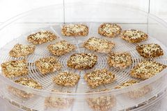 Vegan cookies are prepared on the dehydrator grid. Vegan cookies from wheat with wheat germ, raisins and sesame in preparing process on the dehydrator grid. Top royalty free stock images