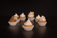 Vegan Cupcakes infront of dark Background Royalty Free Stock Photos