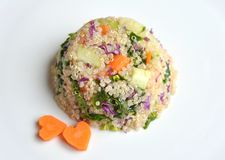 Vegan dish : quinoa with spinach, carrot and cucumber. Vegan dish : quinoa salad with carrot, spinach, cabbage and cucumber . A vegetarian source of proteins royalty free stock photography