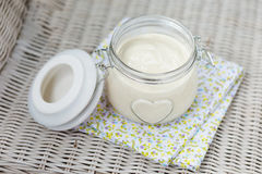 Vegan diy homemade eggfree mayonaise royalty free stock photo