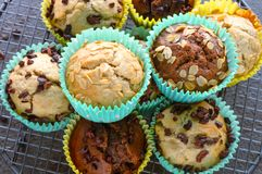 Vegan muffins on a baking tray. Vegan and eggless dairy free chocolate chip,vanilla, oats,cacao nib muffins stock image