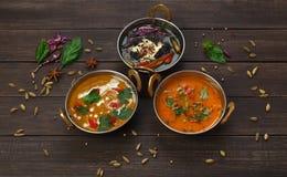 Vegan et plats épicés chauds de cuisine indienne végétarienne Photo libre de droits