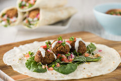 Vegan Falafel Wrap With Salsa Royalty Free Stock Images