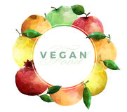 Vegan food colorful background. Vector illustration Royalty Free Stock Photos