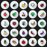 Vegan food icon set  on Round background. Created For Mobile, Web, Decor, Print Products, Applications. Vector illustration Stock Image