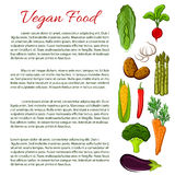 Vegan food infographics poster with vegetables royalty free illustration