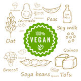 100% vegan food and products. Illustration Stock Image