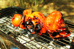 Vegan grill outdoors. Cooked red pepers on grill in the forest Royalty Free Stock Photography