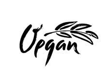 Vegan hand written calligraphy lettering with leaf for cafe menu design. Brush lettering Vector illustration. Stock Image