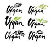 Vegan hand written calligraphy lettering with leaf for cafe menu design. Brush lettering Vector illustration. Stock Photos