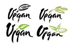 Vegan hand written calligraphy lettering with leaf for cafe menu design. Brush lettering Vector illustration. Stock Images