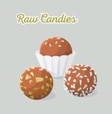 Vegan healthy candies. Raw food. Vector illustration Royalty Free Stock Photo