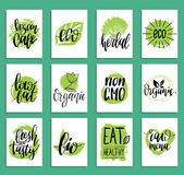 Vegan, healthy food cards or tags set for cafe,restaurant, packaging etc. Vector eco, organic signs with hand lettering. Vegan, healthy food cards or tags set Royalty Free Stock Photos