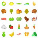 Vegan icons set, cartoon style. Vegan icons set. Cartoon set of 25 vegan icons for web isolated on white background Royalty Free Stock Photos