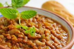 Vegan lentil stew Royalty Free Stock Images