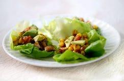 Vegan lettuce wraps with veggies Royalty Free Stock Photos