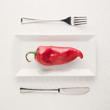 Vegan low-carb diet raw uncut red pepper on rectangular plate Royalty Free Stock Photo