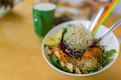 Vegan lunch. Ginger sesame soy baked tofu, shredded beets & carrots, on organic brown rice & spinach, topped with sprouts, pumpkin & sunflower seeds and a tahini stock photography