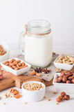 Vegan milk from nuts in glass jar Royalty Free Stock Photos