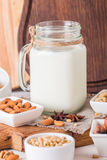 Vegan milk from nuts in glass jar Royalty Free Stock Photo