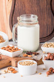 Vegan milk from nuts in glass jar Royalty Free Stock Images
