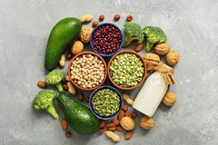 Vegan protein source. Healthy foods rich in protein for vegan and vegetarian, vegetables, milk, legumes, seeds, nuts on a gray