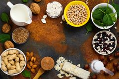 Vegan proteins food. Selection of vegan proteins products: nuts, beans, buckwheat, soy milk. Space for text royalty free stock image