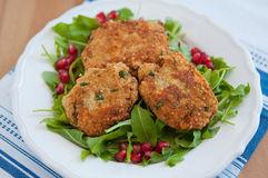 Vegan Quinoa Patties Royalty Free Stock Photos