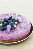 Vegan raw blueberry cake Stock Photography