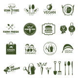 Vegan related vintage badges, labels and design elements. Royalty Free Stock Photography