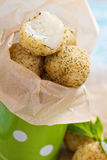 Vegan risotto arancini. Fried with herbs and breadcrumbs Stock Images