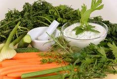 Vegan salad meal with dip Royalty Free Stock Photo