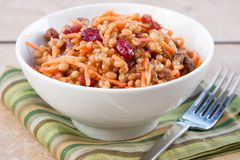 Vegan Salad - Wheat Berry Salad with Cranberries Stock Photography